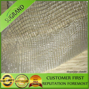 100% New HDPE Ultra Fine Insect Mesh Netting pictures & photos