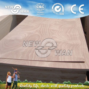 2.5mm / 2.7mm / 3mm / 3.2mm / 4mm Plywood Door Skin pictures & photos
