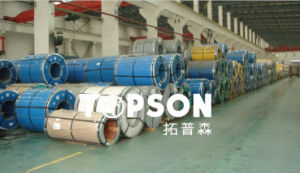 Stainless Steel Coil/Stripes pictures & photos