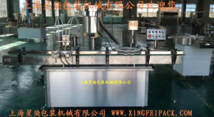 Paste and Lotion Filling and Capping Machine pictures & photos