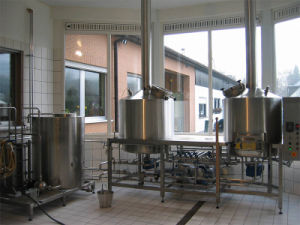 Commercial/Industrial Pub Beer Brewery Equipment pictures & photos