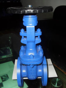 DIN Standard F5 Gate Valve pictures & photos