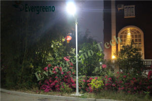 12V 80W 100W LED All in One Solar Street Light pictures & photos