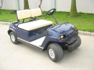 High Quality 2 Seaters Electric Buggy pictures & photos