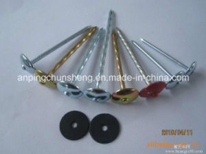 Twisted Shank Roofing Nails pictures & photos