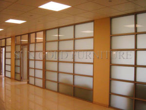 Moden Modular Office Partition Glass Office Walls (SZ-WS507) pictures & photos