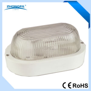 Hot Sale E27 60W Outdoor Wall Light pictures & photos