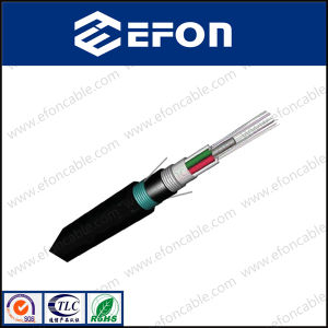 Outdoor Direct Buried 8 Core Singlemode Fiber Netwok Cable pictures & photos