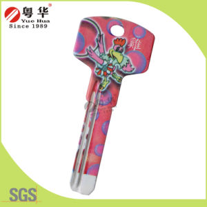 Best Quality Arts Key or Painted Key for Colour Key Blank pictures & photos