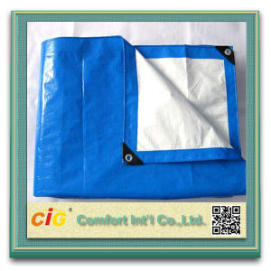 PE Tarpaulin for Truck Cover/PE Clear Tarpaulin pictures & photos