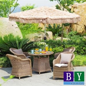 Leisure Garden Furniture Outdoor Furniture pictures & photos