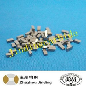 Hip Stable Performance Carbide Saw Tips for Wood Cutting Use Made in China pictures & photos