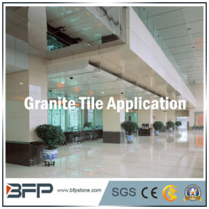 Stone Marble & Granite Floor Tile / Flooring Tile of Building Material pictures & photos