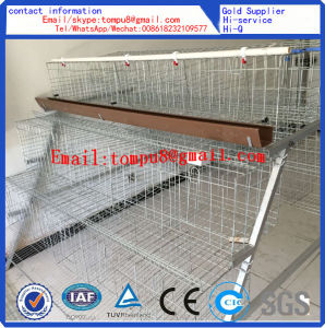 Egg Layer Chicken Cage pictures & photos