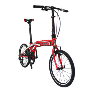 "20"" Aluminum Alloy Frame Folding Bike 8 Speed Shimano Derailleur pictures & photos"
