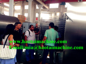 High Quality Vacuum Freeze Dryer for Durian pictures & photos