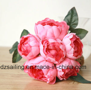 6 Heads Peony Bouquet Artificial Flower (SW12001) pictures & photos