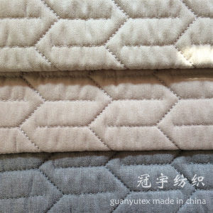 Compound Polyester Fabric for Home Decoration pictures & photos