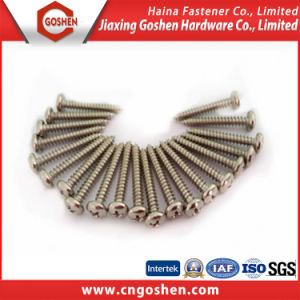 China Gold Supplier Stainless Steel Pan Head Self Tapping Screws pictures & photos