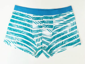 Allover Printed New Style Men′s Boxer Short Underwear pictures & photos