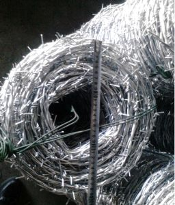 Double Strand Security Barbed Wire pictures & photos