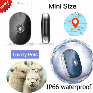 Newest Mini Pet GPS Tracker with Sos Button pictures & photos
