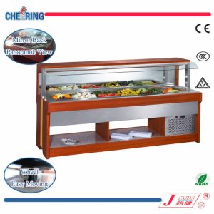 Hoodl Type Uncover Salad Bar with Wood and Stainless Steel Body pictures & photos