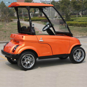 Mini 2 Seats Street Legal Golf Cart with EEC (DG-LSV2) pictures & photos