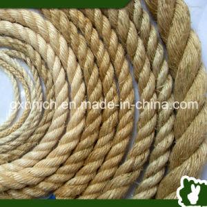 twisted sisal rope of various - Sisal Rope