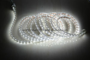 Waterproof Connector 220V / 127V LED Rope Light pictures & photos
