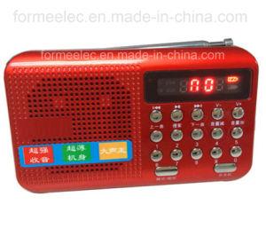 Portable Amplifier Multimedia Loudspeaker TF Card FM Radio pictures & photos