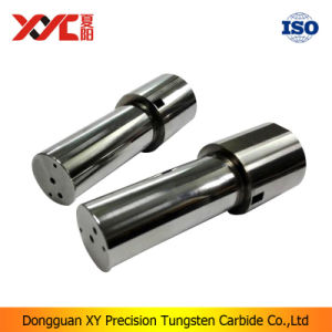 Solid Tungsten Carbide Stamping Punch Dies Manufacturer pictures & photos