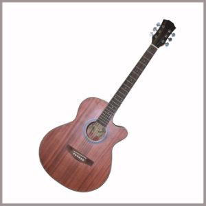 Ukelele Guitar for Beginner / Student Guitar / Musical Instruments (GT20U1012EQND)