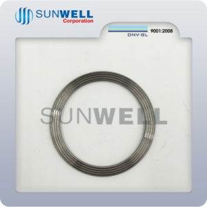 Metal Corrugated Gaskets, Cixi Corrugated Gaskets pictures & photos