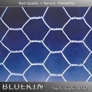 Low Price Hexagonal Wire Netting Made in China