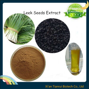 100% Natural Leek Seed Extract pictures & photos