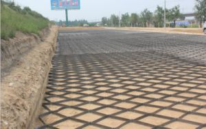Geogrid Price Soil Stablization PP Biaxial Geogrid pictures & photos