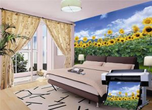 Printing Canvas for Walls pictures & photos
