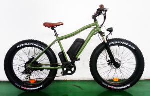48V 500W Big Power Fat Tire Mountain Electric Bike