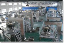 Tube Gel Packaging Machine (XF-GF) pictures & photos