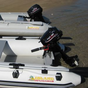 5.8HP 2-Stroke Outboard Engine pictures & photos