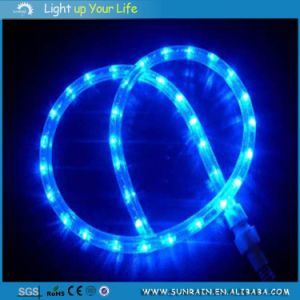 LED Rope Light for Christmas pictures & photos