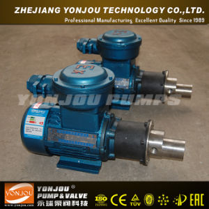 CQCB Stainless Steel Magnetic Gear Pump pictures & photos
