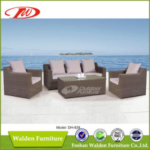 Outdoor Furniture, Garden Furniture (DH-828) pictures & photos