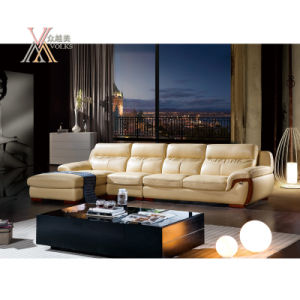 Living Room Leather Sofa Set with Chaise (809)