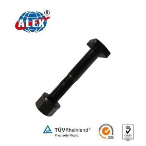 Square Head Bolts with Nut for Railway pictures & photos