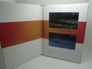 Newest LCD Video Brochrue-Video Booklet-Video Card with HD Screen for Business Promotion pictures & photos