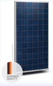 Solar Module 305 Poly pictures & photos