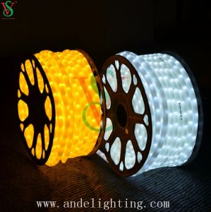 Different Color LED Rope Light Flex Neon Light pictures & photos