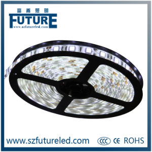 Future 3W/M SMD 5050 Rope Light Waterproof LED Strip Light pictures & photos
